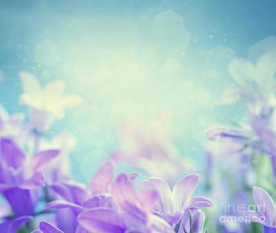 Campanula Floral Background Poster by Mythja  Photography