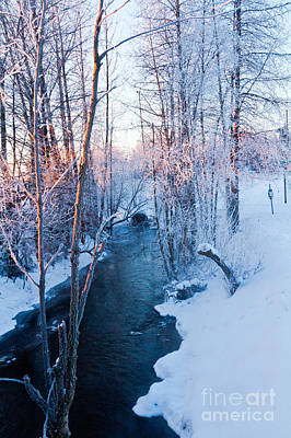 Campbell Creek In Hoarfrost Poster