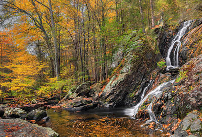 Campbell Falls Autumn Poster by Bill Wakeley