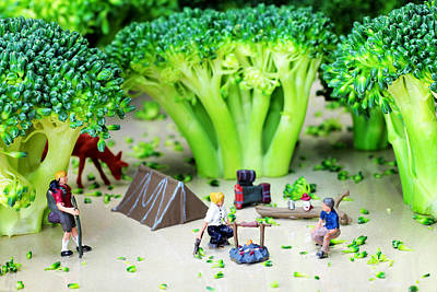 Camping Among Broccoli Jungles Miniature Art Poster