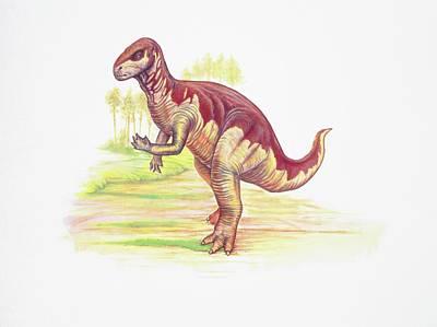 Camptosaurus Dinosaur Poster