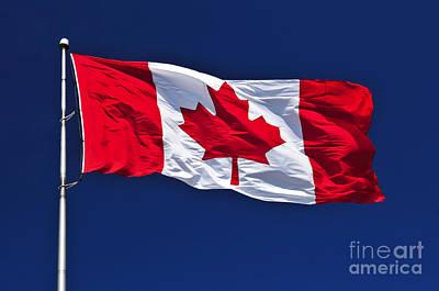 Canadian Flag Poster by Elena Elisseeva