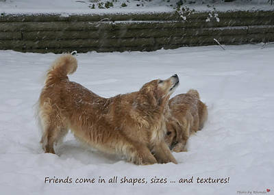 Canine Friends Poster by Rhonda McDougall