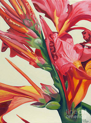 Canna Lily Poster by Annette M Stevenson