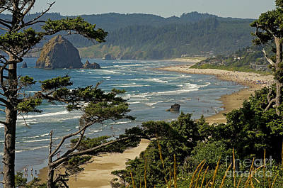 Poster featuring the photograph Cannon Beach Seascape by Nick  Boren