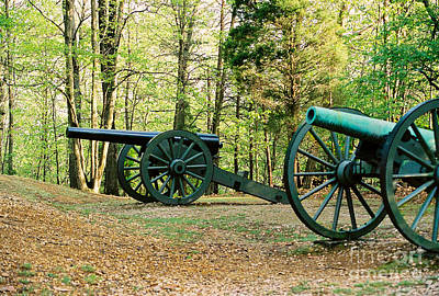 Cannons I Poster by Anita Lewis