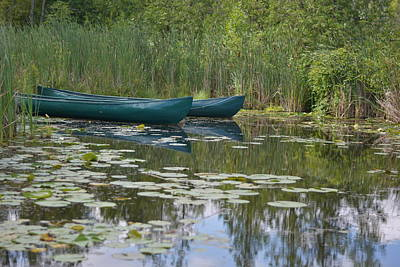 Canoes On Marshland Poster