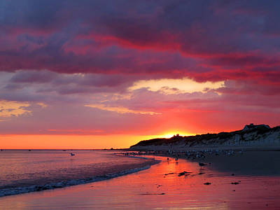 Cape Cod Bay At Sunrise Poster by Dianne Cowen