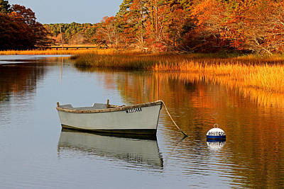 Cape Cod Fall Foliage Poster
