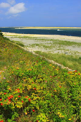 Cape Cod Lighthouse Beach Chatham Poster
