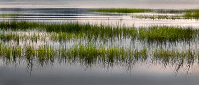 Cape Cod Marsh Poster by Bill Wakeley
