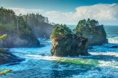 Cape Flattery Poster by Rich Leighton