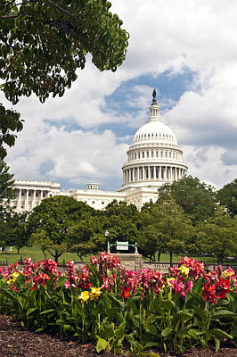 Capitol Buildingwashington Dc And Flower Garden Poster