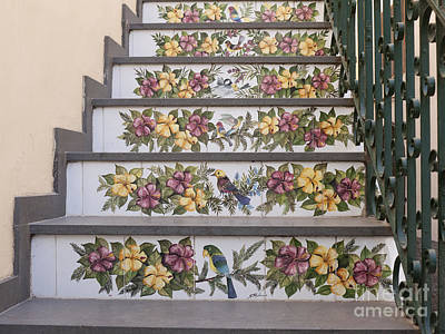 Capri Staircase With Birds Poster by Brenda Kean