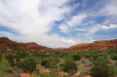 Poster featuring the photograph Caprock Canyons State Park 2 by Elizabeth Budd