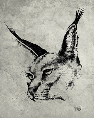 Caracal Greyscale Poster by Anthony Mwangi
