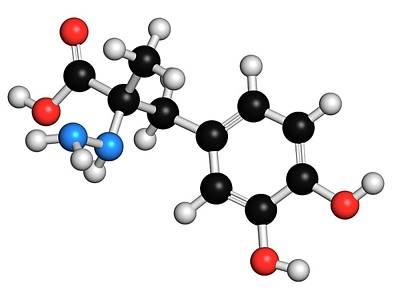 Carbidopa Parkinson's Disease Drug Poster by Molekuul