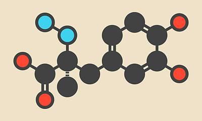 Carbidopa Parkinson's Drug Molecule Poster by Molekuul