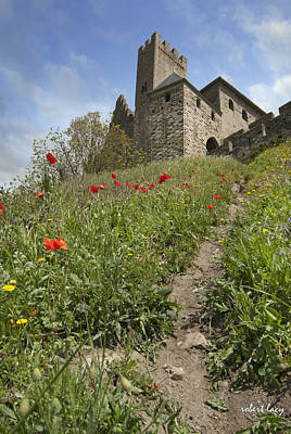 Carcassonne Poppies Poster