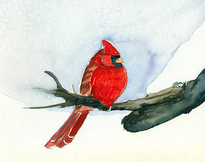 Cardinal Poster by Katherine Miller