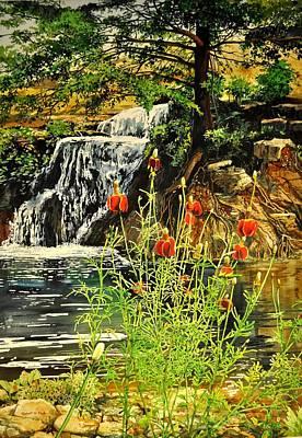 Carey Falls At Star Ranch Poster