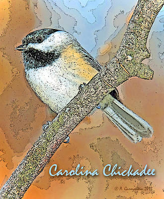 Poster featuring the photograph Carolina Chickadee Digital Image by A Gurmankin