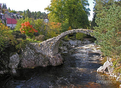 Carrbridge Autumn Poster