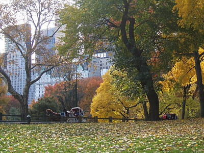 Poster featuring the photograph Carriage Ride Central Park In Autumn by Barbara McDevitt