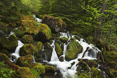 Cascades In The Woods Poster by Andrew Soundarajan