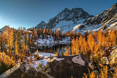 Cascades Ring Of Larches Poster by Mike Reid
