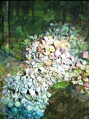 Cascading Hydrangea Poster