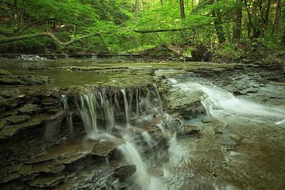 Cascading Water In Columbia Run Creek Poster by Debbie Dicarlo