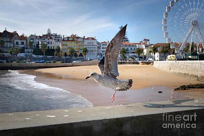 Cascais Seagulls Poster by Carlos Caetano