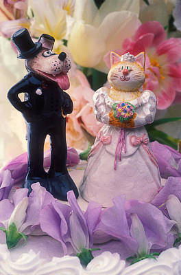 Cat And Dog Bride And Groom Poster by Garry Gay