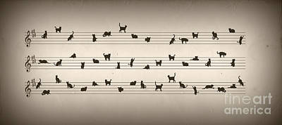 Cat Song Poster