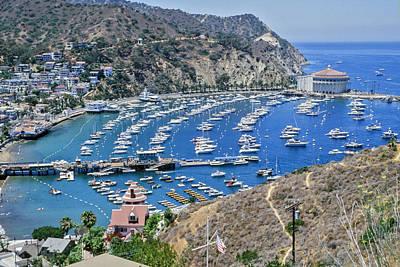 Catalina Harbor Poster by Kelley King