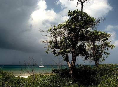 Catamaran Storm Poster