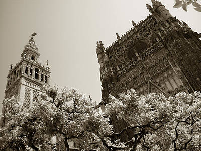 Cathedral Of Seville Poster