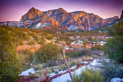 Cathedral Rock Sedona Poster by Shanna Gillette