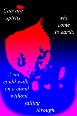 Cats Are Walking Spirits Just Like Yourself   Poster by Hilde Widerberg