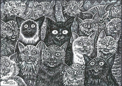 Cats Eyes Poster by Giovanni Caputo
