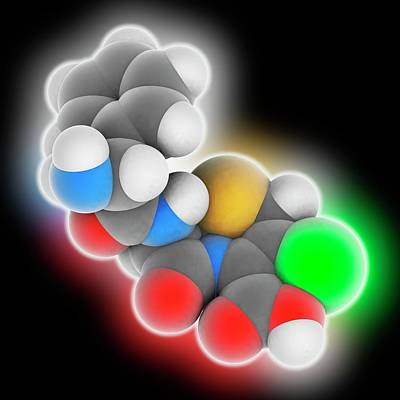 Cefaclor Drug Molecule Poster by Laguna Design
