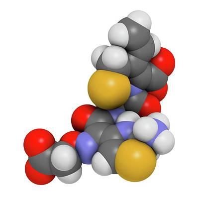 Cefixime Antibiotic Drug Molecule Poster by Molekuul