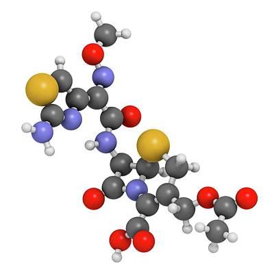 Cefotaxime Antibiotic Drug Molecule Poster by Molekuul