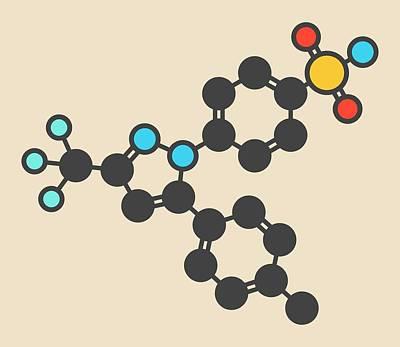 Celecoxib Inflammation Drug Molecule Poster