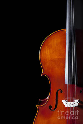 Cello Poster by Diane Diederich