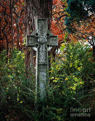 Celtic Cross In Foliage Poster