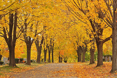 Cemetery In Autumn Poster