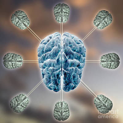 Central Brain Poster
