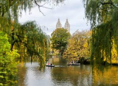 Central Park #7 Poster